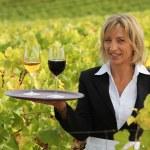 Blond waitress in field holding trey of wine — Stock Photo