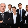 A team of business professionals — Stock Photo