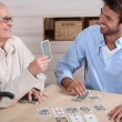 Stockfoto: Mother and son playing cards