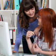 Стоковое фото: Two students studying together