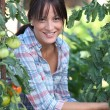 Girl next to tomatoes — Stock Photo #7712970