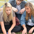 Three students working together in a park — Stock Photo