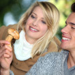 Couple looking at wild mushroom - Stockfoto
