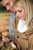 Young couple gathering wild mushrooms — Stock Photo