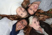 4 young heads in the grass at autumn — Stock Photo