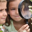 Children with a magnifying glass — Stock Photo #7733305