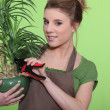 Young woman with a houseplant — Stock Photo