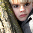 Young boy hugging a tree — Stock Photo