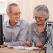 Cheerful senior couple browsing on the Internet - Foto Stock