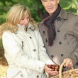 Royalty-Free Stock Photo: Couple collecting chestnuts in basket