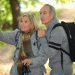 Older couple in woods — Stock Photo #7745326