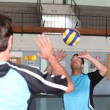 Stock Photo: Volley-ball player in action