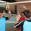 Stock Photo: Young men playing volleyball