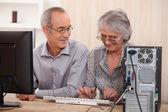 Cheerful senior couple browsing on the Internet — Stock Photo
