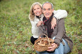 Senior koppel verzamelen paddestoelen in het forest — Stockfoto