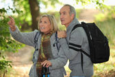 Older couple in woods — Stock Photo