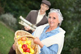 Elderly couple collecting objects in the forest — Stock Photo