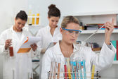 Women working in a scientific laboratory — Stock Photo