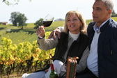 Couple tasting wine in vineyard — Foto Stock