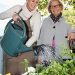 Young woman spending time with her grandmother in the garden — Stock Photo