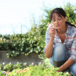 Woman in herb garden — Stock Photo
