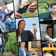 Viticulture themed collage - Stock Photo