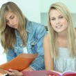 Royalty-Free Stock Photo: Two female teenagers sat studying