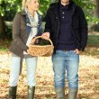 Couple collecting chestnuts — Stock Photo #7789625