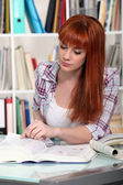 Girl studying in the library — Stock Photo
