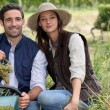 Stock Photo: Couple picking grapes in vineyard