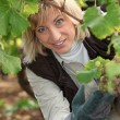 Portrait of a wine-grower — Стоковое фото