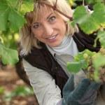 Ritratto di un viticoltore — Foto Stock