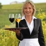 donna servire vino rosso e bianco in un vigneto — Foto Stock