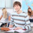 Stock Photo: Teenage students working in classroom