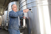 Wine producer stood by tanks — Stock Photo