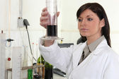 Brunette scientist in laboratory — Stock Photo