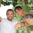 Stock Photo: Couple picking fruit