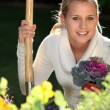 Stock Photo: Young female gardener