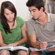 Teenagers revising — Stock Photo #7802326