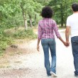 Couple walking in a forest — Stock Photo #7802879