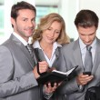 Stock Photo: Business colleagues checking agenda
