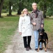 Stok fotoğraf: A 60 years old woman holding husband's arm in a park in autumn, the m