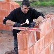 Man erecting a brick wall - Stock fotografie