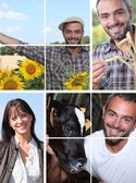 Collage illustrating life on the farm — Stock Photo