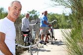 Senior men and women riding bicycles — Stock Photo