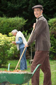 Elderly couple in their garden — Stock Photo