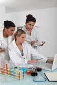 A team of female scientists examining the results of an experiment — Stock Photo