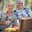 Senior couple enjoying a picnic — Stock Photo