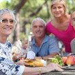 Stock Photo: Senior womhaving picnic with friends