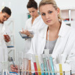 Stock Photo: Women working in a laboratory